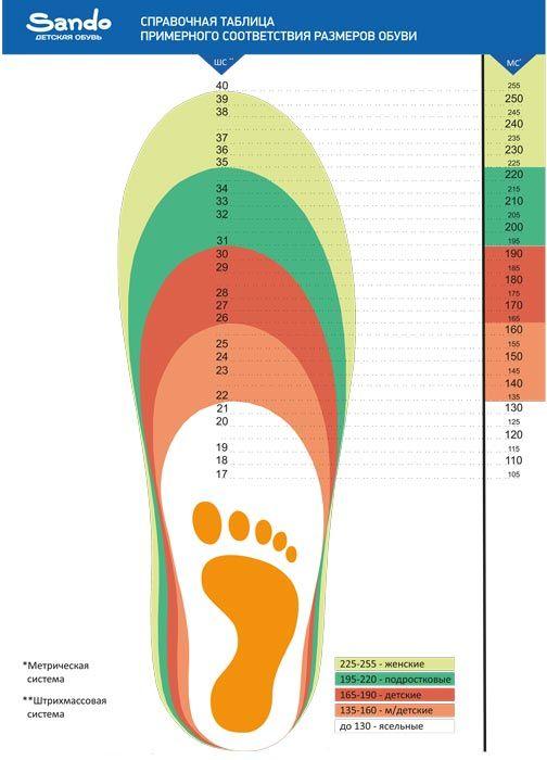 Размер обуви 250 это какой размер