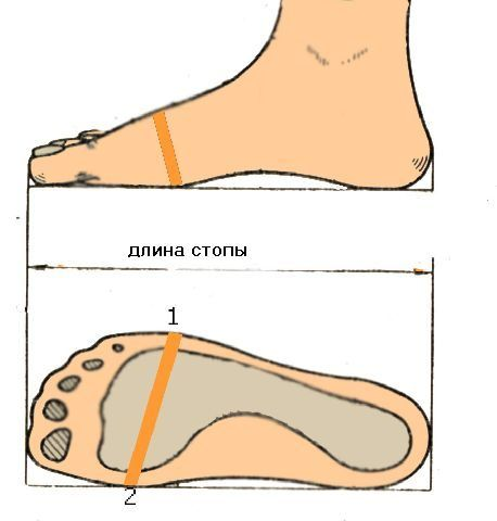 Как правильно выбирать кроссовки по размеру