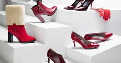 Доля магазинов одежды и обуви на рынке eСommerce составляет 38%. Около 38% от всех онлайн-заказов крупнейших 1000 магазинов в...