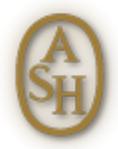 Ash – итальянская обувь, сочетающая несочетаемое