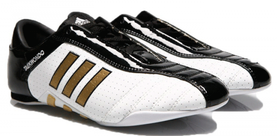 Кроссовки «Adidas-Evolution 2» для тэквондо